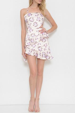 Rose_Print_Ruffle_Dress_1__00593.1498588396